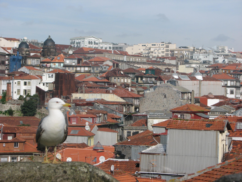 семимильными шагами португалия в феврале фото эпизоде
